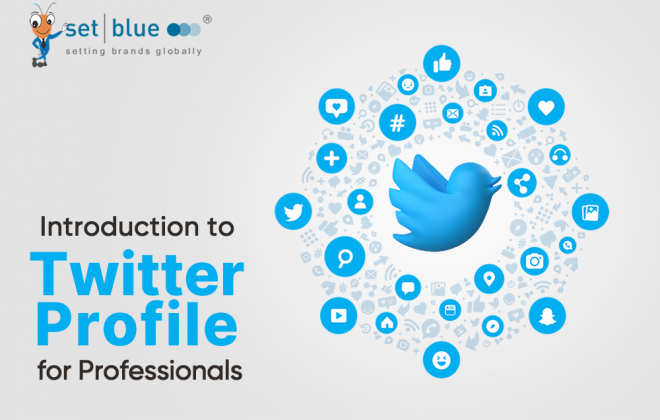 introduction-to-twitter-profile-for-professionals